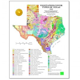 SM0008. Vegetation/Cover Types of Texas