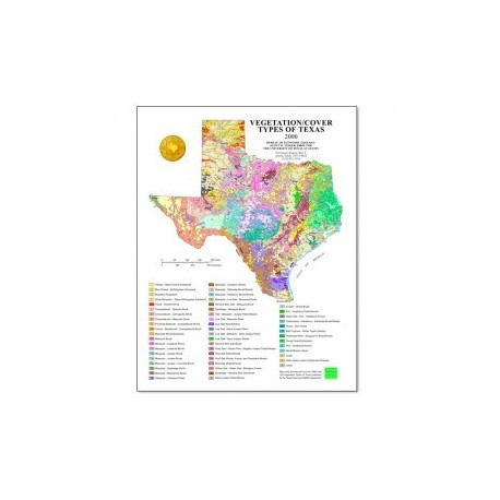SM0008P. Vegetation/Cover Types of Texas Map (poster)
