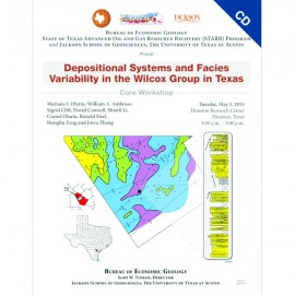 SW0021CD. Depositional Systems and Facies...Wilcox Group