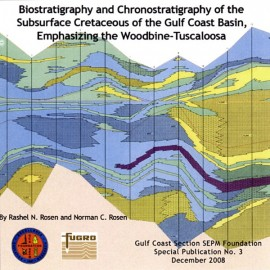 GCS 213. Biostratigraphy and Chronostratigraphy of the Subsurface Cretaceous of the Gulf Coast Basin...