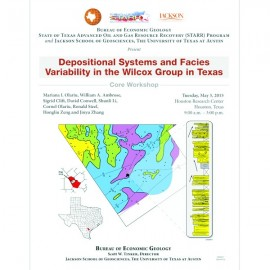 SW0021. Depositional Systems and Facies...Wilcox Group