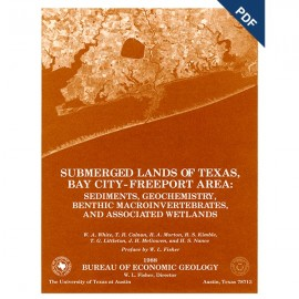 SL0001D. Submerged Lands of Texas, Bay City-Freeport Area: Sediments, Geochemistry, ... - Downloadable PDF