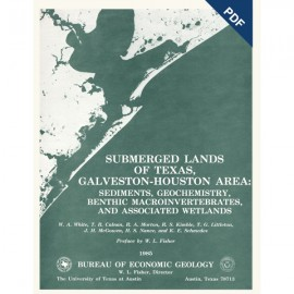 SL0005D. Submerged Lands of Texas, Galveston-Houston Area: Sediments, Geochemistry, Benthic Macroinvertebrates, ...