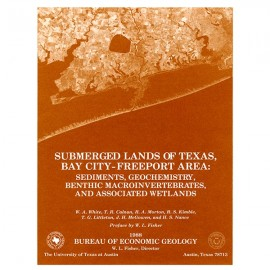 SL0001. Submerged Lands of Texas, Bay City-Freeport Area: Sediments, Geochemistry, Benthic Macroinvertebrates, and Associated We