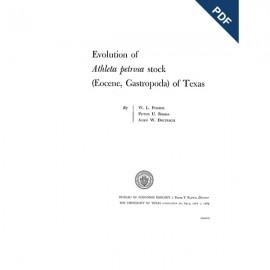 PB6413. Evolution of Athleta petrosa Stock (Eocene, Gastropoda) of Texas