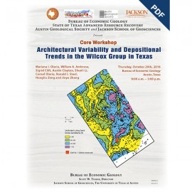SW0022D. Architectural Variability and Depositional Trends in the Wilcox Group in Texas