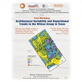SW0022. Architectural Variability and Depositional Trends in the Wilcox Group in Texas